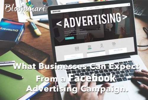 What Businesses Can Expect From a Facebook Advertising Campaign
