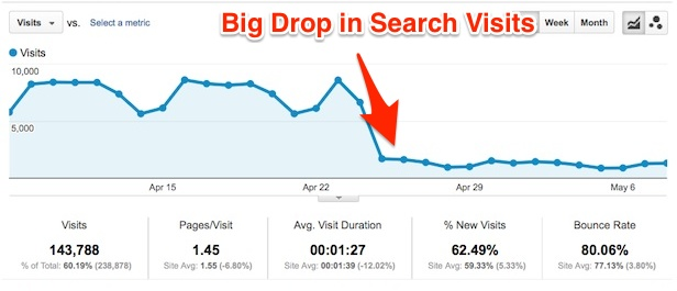 Big Drop in Google Search Visits example by Bloominari