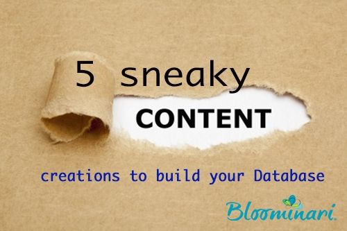 5 Sneaky Content Creations to Build Your Database