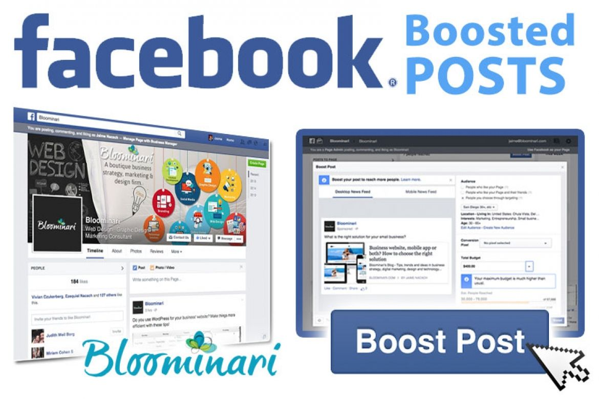 Facebook Boosted Posts Vs  Ads